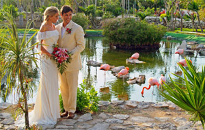 Свадебные церемонии в Мексике от Coral Travel