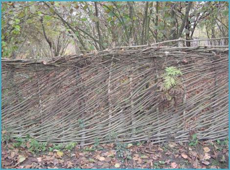pletenyj-zabor-svoimi-rukami