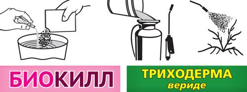 http://antigryzun.ru/images/upload/vhoz_systema_agro_zashity_dlya_sada_n3_info.jpg