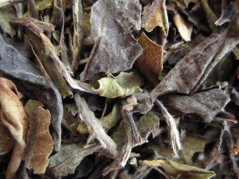типсовый белый чай