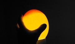 Овоскоп для страусиных яиц