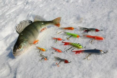 Ловля рыбы на балансир