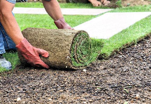 Как работать с рулонным газоном?