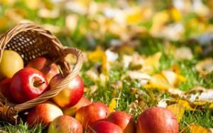 Яблочный уксус, применение