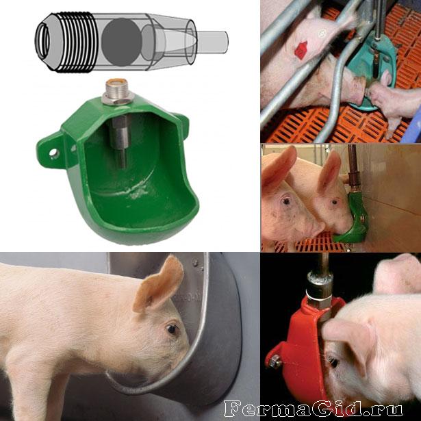 Чашечные поилки для свиней