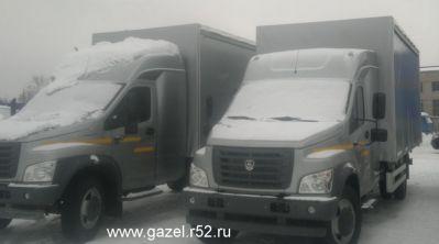 gazon_nekst1