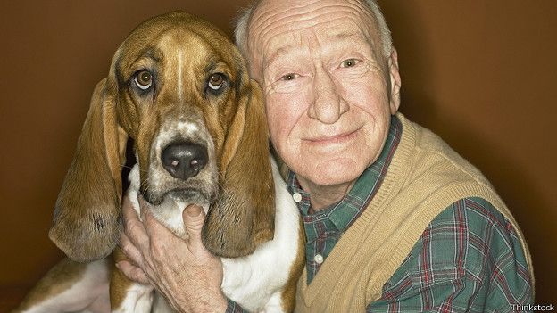 Собака со своим старым хозяином