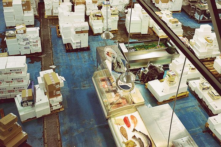 Поставки на складе La Marée ежедневные. При этом 80 процентов из того, что привозится, уже раскуплено заранее. Есть в этих коробках и акула, и корюшка