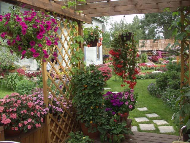 Приемы посадки ампельных цветов ЗЕМЛЯ И ДОМ