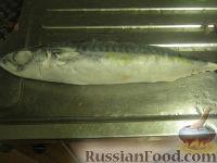 Фото приготовления рецепта: Скумбрия, запеченная в фольге - шаг №2