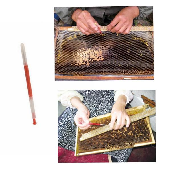 пчеловодства инструменты пчеловоды прививки инструменты Выдвижной тип пчеловод иглы прививки