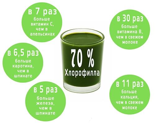 Почему хлорофилл очень полезный?