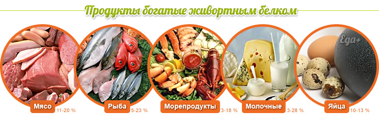 Животный белок в Молдове купить NSP