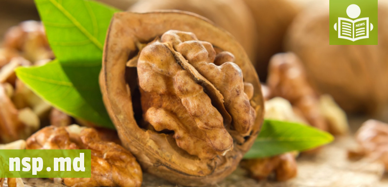 Интересное исследование о грецком орехе