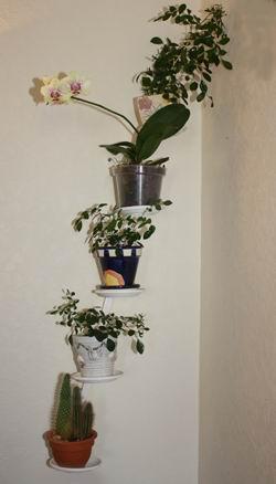Настенные подставки для цветов, подставка под цветы на стену, настенные подставки под цветы