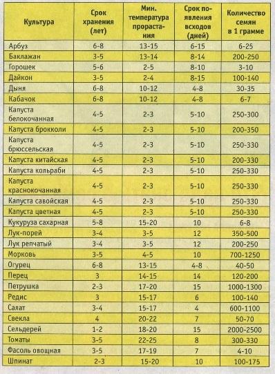 Выращивание рассады - основные правила Саженец.ру