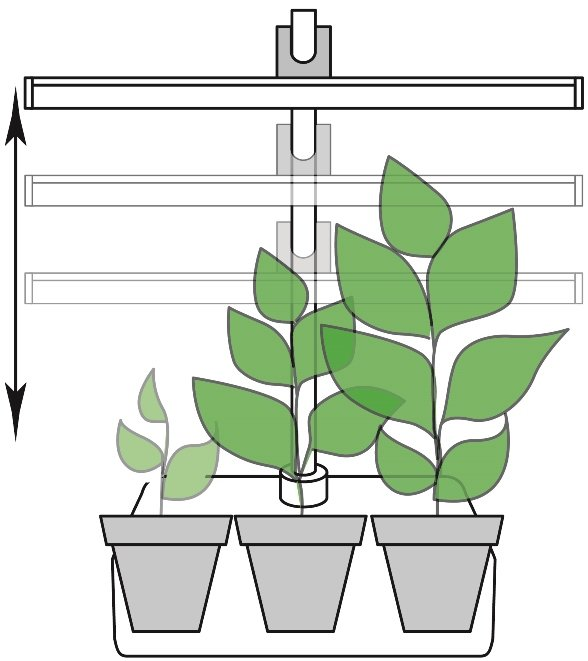 Регулируемая высота освещения растений