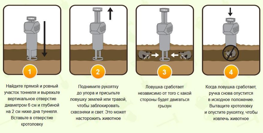 Кротоловка Кот Федор