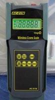 Весы электронные крановые