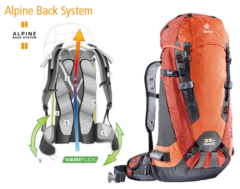 Система ― Deuter Alpine Back System