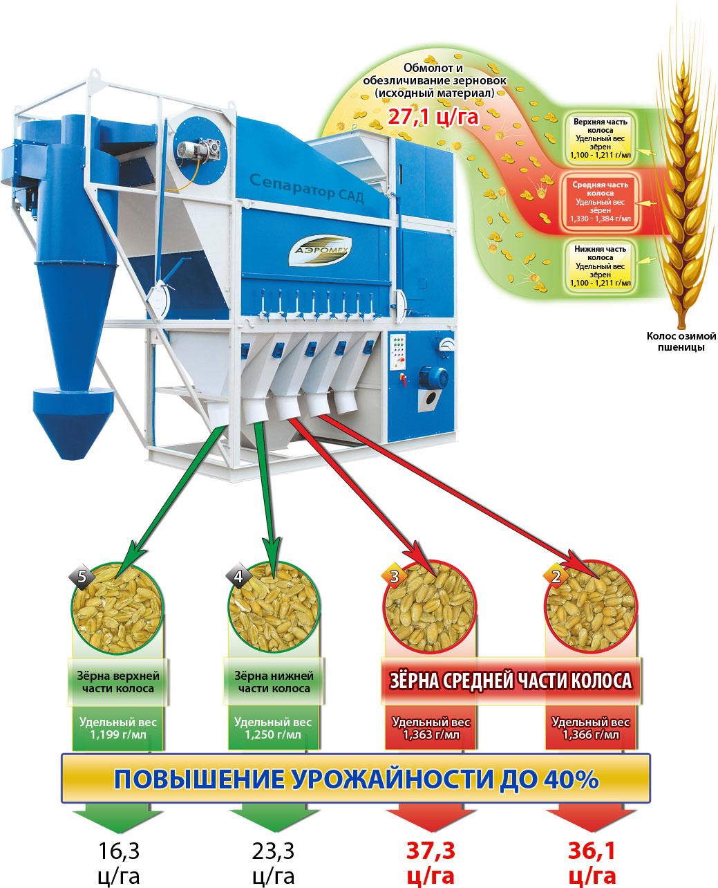 Схема Технология получения высокоурожайных семян на зерноочистительной машине САД