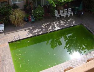 Видимые дефекты воды и способы их устранения
