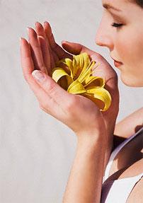 Парфюмерия. Что надо знать об ароматах. Как выбрать духи - семь шагов