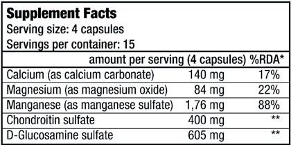 BioTech-USA-Chondroitin-Glucosamine-sostav