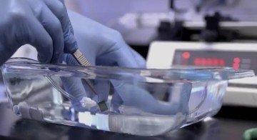 Применение лимонной кислоты при  обработке аппарата искусственная почка