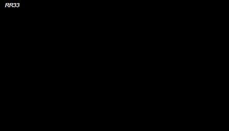RR 33