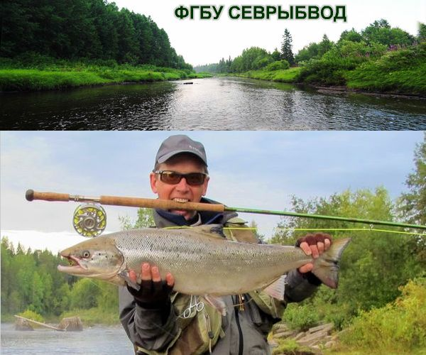 Оплала Рыболовная база Северодвинск для семейного и корпоративного отдыха Рыбоводческие хозяйства