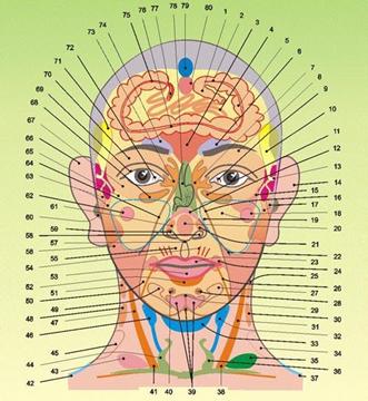 Схема акупунктурного массажа