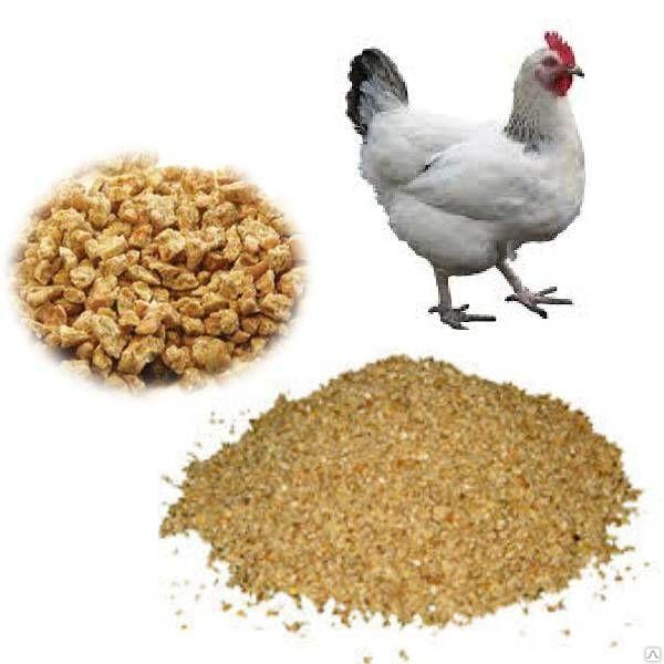 комбикорм для домашней птицы