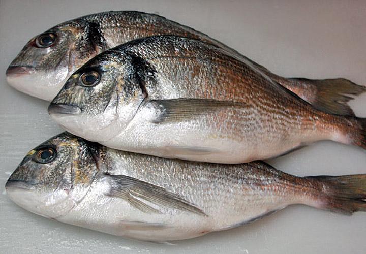 Дорада, фаршированная овощами ― Рецепт приготовления с фото ― Горячие блюда, Блюда из рыбы и морепродуктов