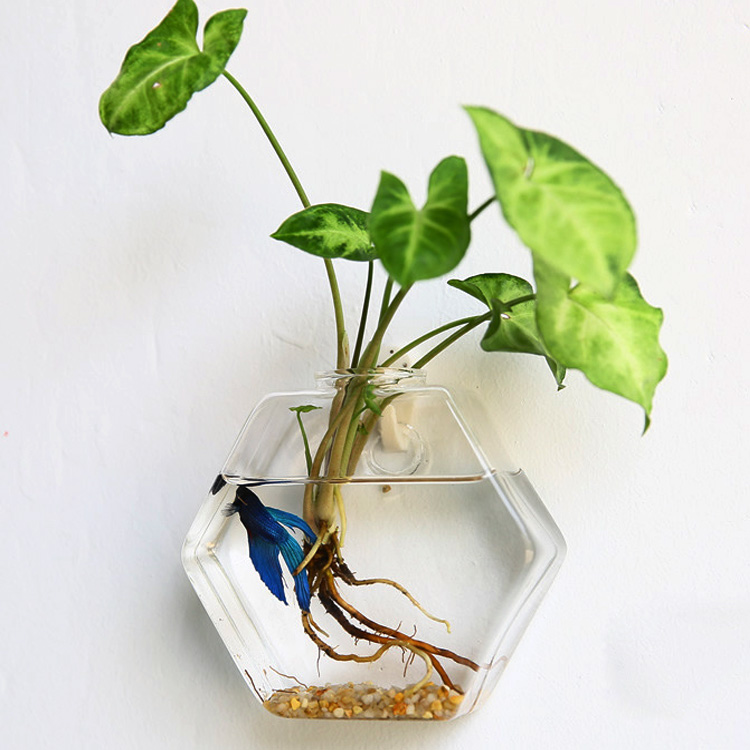 сад стеклянная ваза