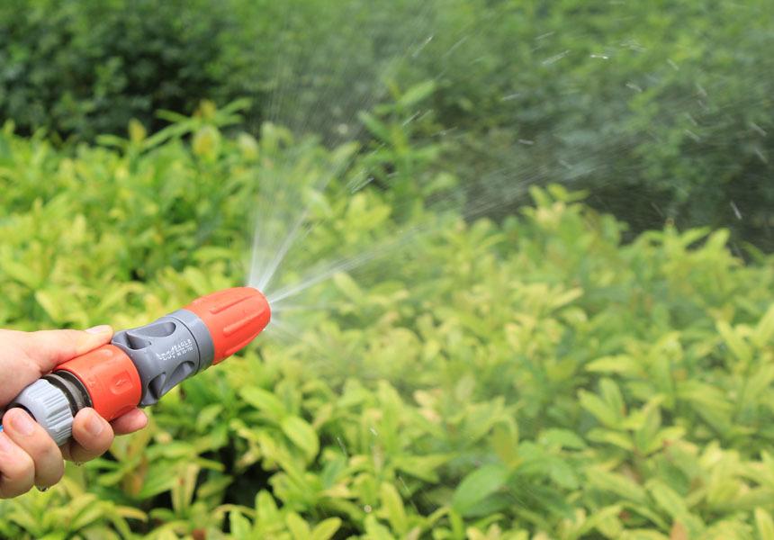 регулируемая полив распылитель