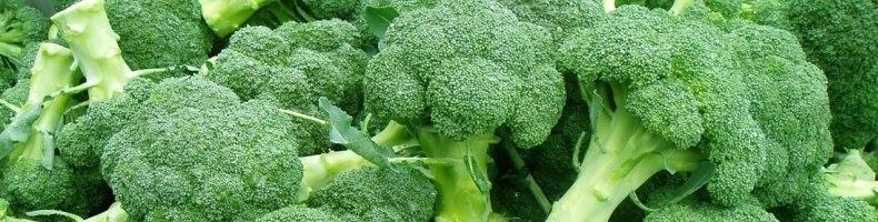 Брокколи также содержит противораковый в-каротин, индолы, клетчатку, калий, кальций и селен.