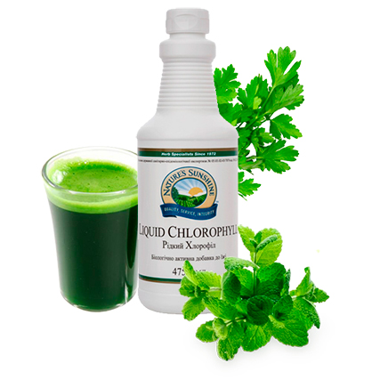 Хлорофилл - зеленое чудо природы