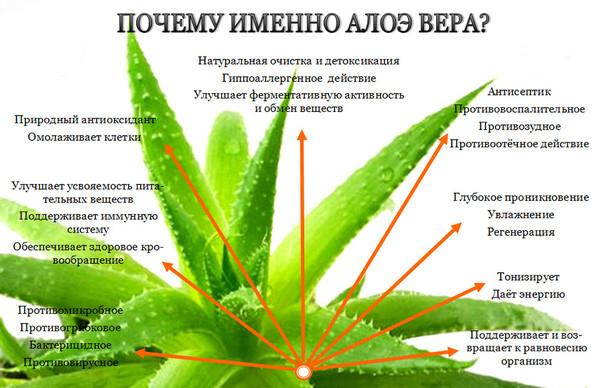 Сок Алое в Молдове купить