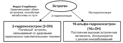 Индол 3 и Эстрогены