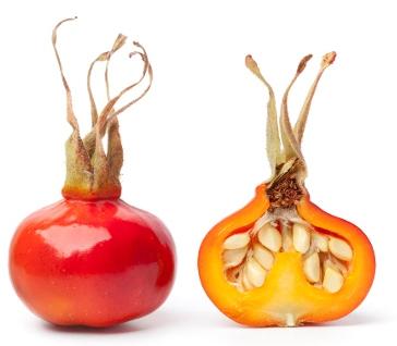 Vitamin C от NSP - это натуральный продукт, содержащий аскорбиновую кислоту, плоды ацеролы и шиповника