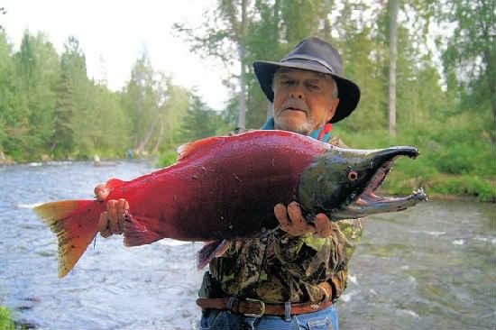 Losos' kakaja jeto ryba1