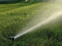 Таймери для присадибного та сільського господарства.