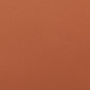 Terra коричневая