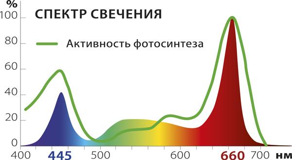 спектр-сайт.jpg